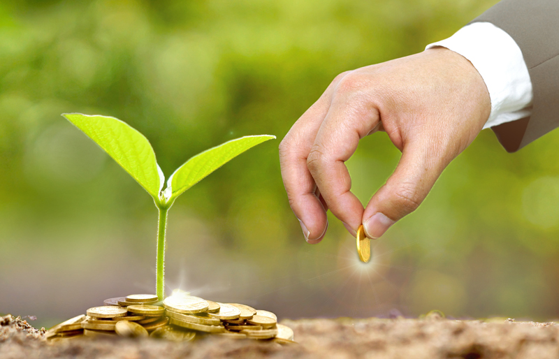 Plant growing from small pile of coins, while the hand of a business man plants a coin in to soil.